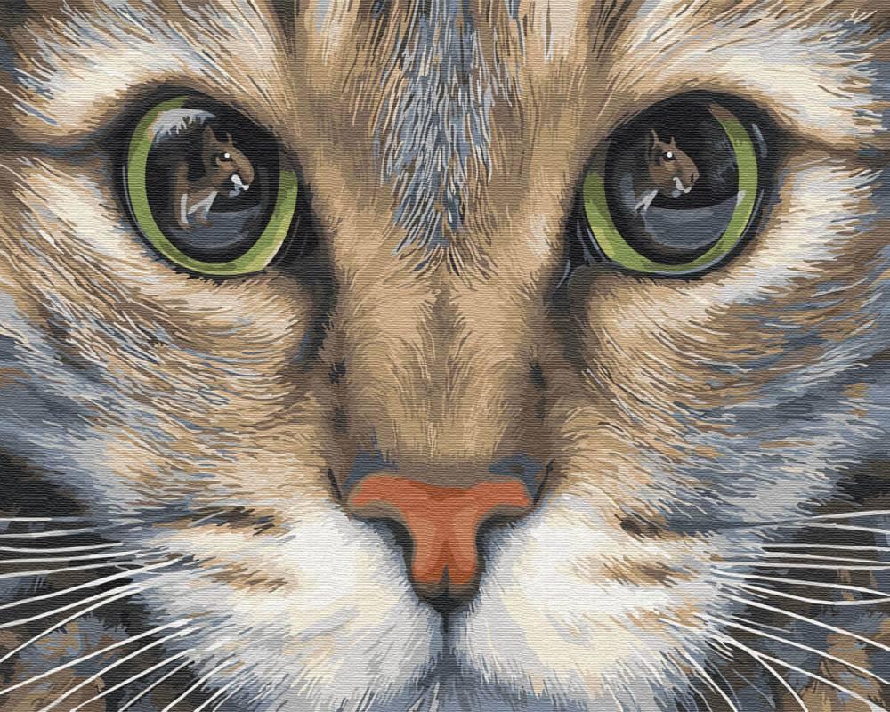 картинки кошачьи мордочки зала стиле барокко