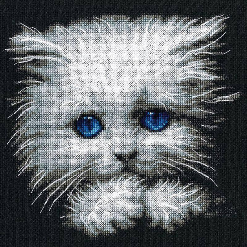 картинки котенок пушок то, что хотите